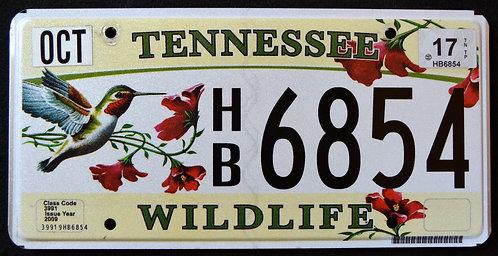 TN Wildlife Hummingbird - Flowers - HB6854