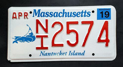MA Nantucket Island - Wildlife Whale - NI2574