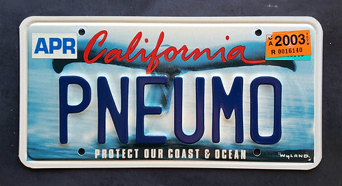 CA California Whale Tail - Protect Our Coast & Oceans