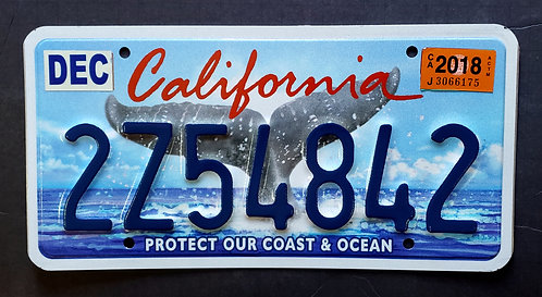 CA Wildlife Whale Tail - Protect Our Coast & Ocean