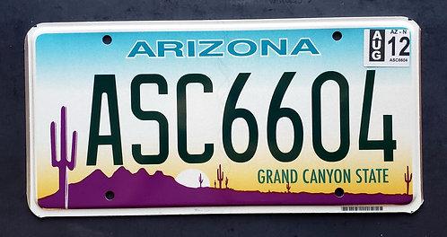 AZ Grand Canyon State - Cactus - Desert Sunset - ASC6604