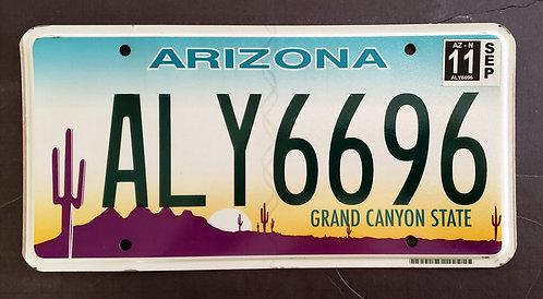 AZ Grand Canyon State - Desert Sunset - Saguaro Cactus - ALY 6696