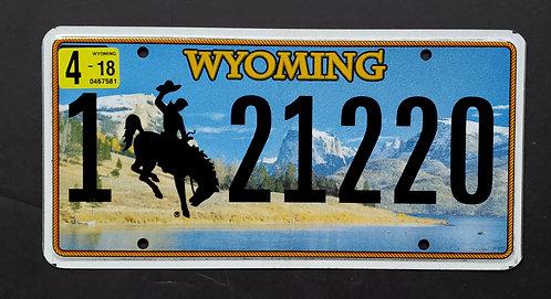 WY Bronco - Bucking Horse - Cowboy - 121220