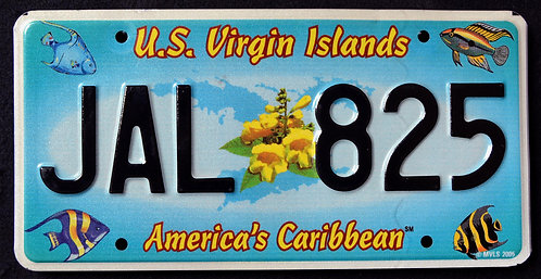 USVI - St. John - America`s Caribbean - Wildlife Tropical Fish - JAL 825