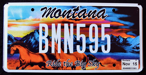 MT Ride The Big Sky - Wildlife Horses