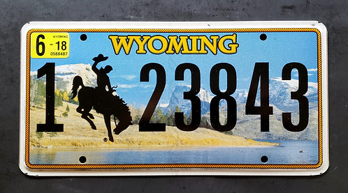 WY Bronco - Grand Tetons NP - Snake River - Horse - Cowboy - 123843