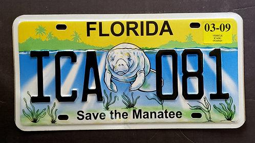 FL Save the Manatee - Wildlife - ICA 081