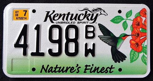 KY Wildlife Hummingbird - Bird - Nature`s Finest - Unbridled Spirit