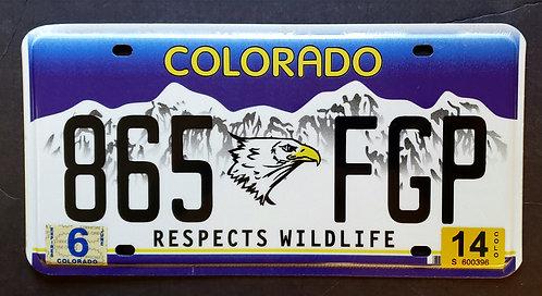 CO Respect Wildlife - Eagle - Bird - 865 FGP