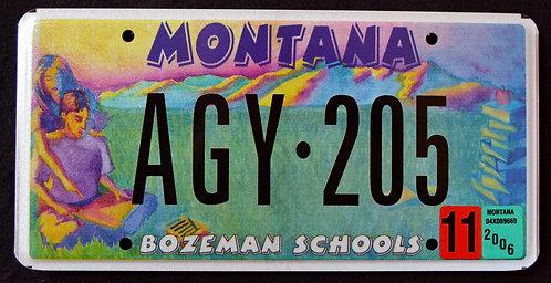 MT Bozeman Schools