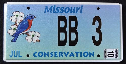 MO Conservation Wildlife Blue Bird