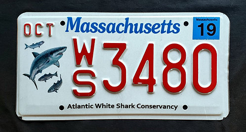 MA Massachusetts - Wildlife Atlantic White Shark - WS3480