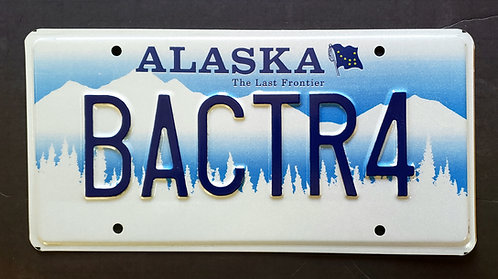 AK White Mountains - The Last Frontier - Alaska Flag - BACTR4