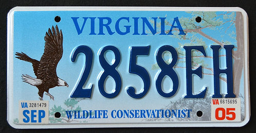VA Wildlife Bald Eagle - Bird - Conservationist