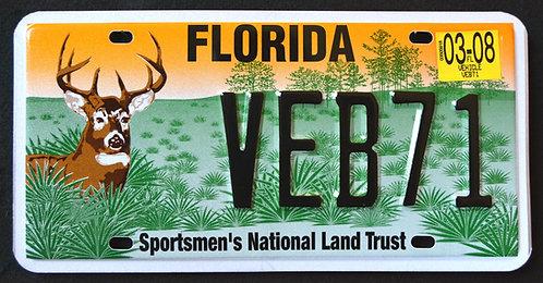 FL Wildlife Deer - Sportsmen`s National Land Trust