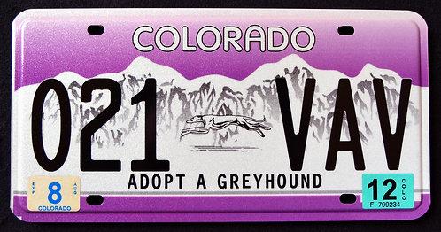 CO Colorado - Adopt A Greyhound - Dog - 021 VAV