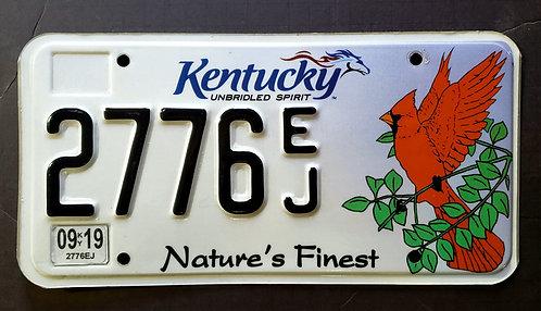 KY Wildlife Cardinal Bird - Nature's Finest - Unbridled Spirit - 2776 EJ