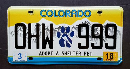 CO Colorado - Cat Dog - Adopt a Shelter Pet - OHW 999