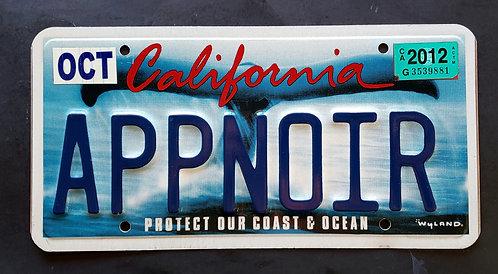 CA California Whale Tail - Protect our Coast & Ocean