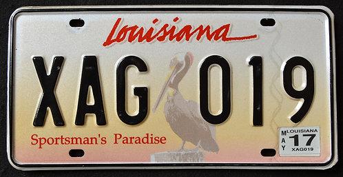 LA Wildlife Pelican - Sportsman`s Paradise - Bird - XAG 019