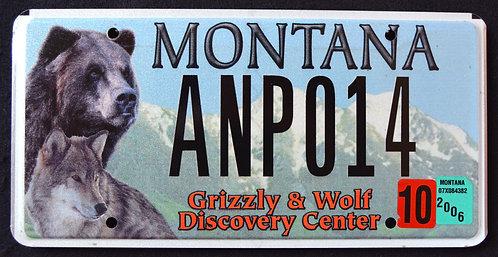 MT Wildlife Grizzly Bear & Wolf