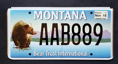 MT Wildlife Grizzly Bear - Bear Trust International - AAB889