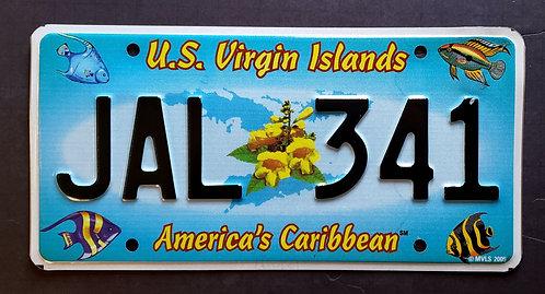 USVI St. John - Wildlife Tropical Fish - America's Caribbean - JAL 341