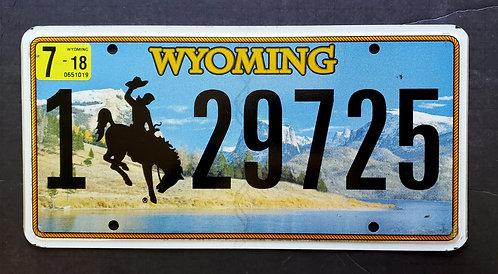 WY Bronco - Bucking Horse - Cowboy - 129825