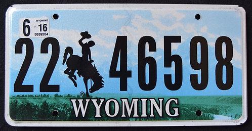 WY Bronco - Bucking Horse - Cowboy - Grand Tetons - Snake River