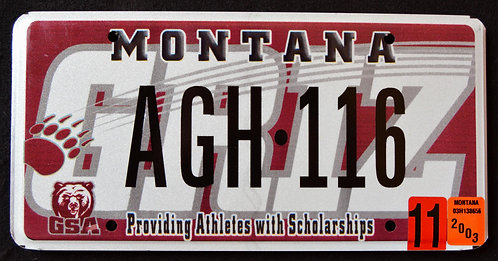 MT Griz - Montana Grizzlies - Football