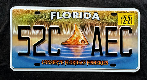 FL Florida - Wildlife Fish - Conserve Florida's Fisheries - 52C AEC