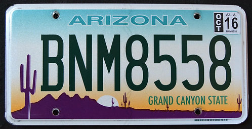 AZ Grand Canyon State - Desert Sunset - Saguaro Cactus - Sunset - BNM8558