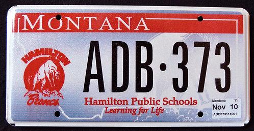 MT Hamilton Public School - Broncos - Football - Bucking Horse
