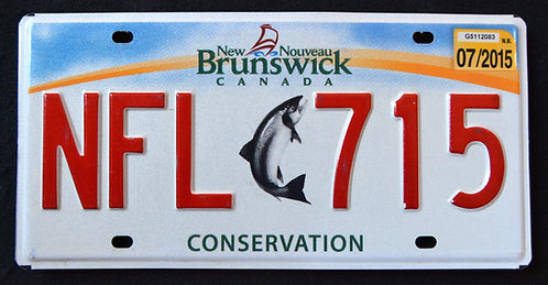 Canada - New Brunswick - Conservation Wildlife Salmon - Fish