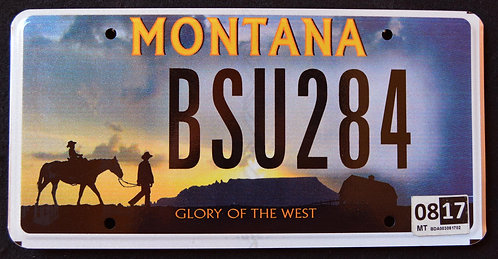 MT Glory of the West - Cowboy - Horse - BSU584