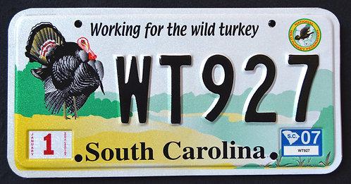 SC Working For The Wild Turkey - Wildlife Bird