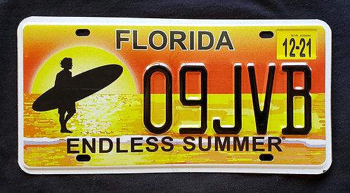 FL Florida - Endless Summer - Surfer - Beach - Ocean - 09JVB