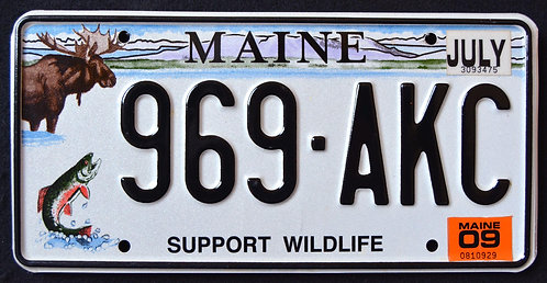 ME Support Wildlife - Moose - Trout - Fish