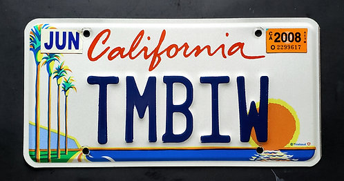 CA California - Arts - Palm Tree - Sunset - Ocean  - TMBIW
