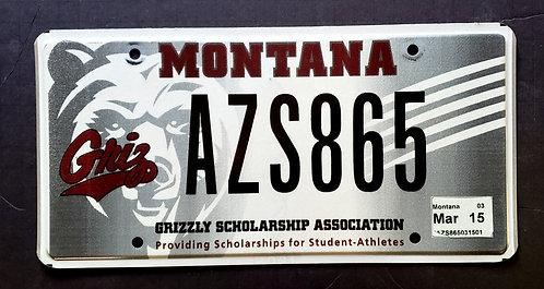 MT Wildlife Grizzly Bear - Montana Grizzlies Football Team - AZS865