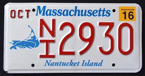 MA Nantucket Island - Wildlife Whale
