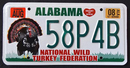 AL Wildlife Turkey - Bird - 58P4B