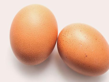 """האם יש קשר בין אכילת ביצים, כולסטרול """"רע"""", מחלות לב ותמותה?"""