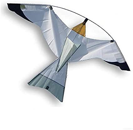 Vlieger Silver Bird - Didakites