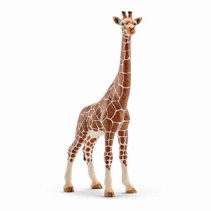 Giraf - Schleich