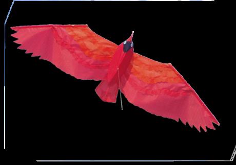 Cerf-Volant Summerbird de Didakites