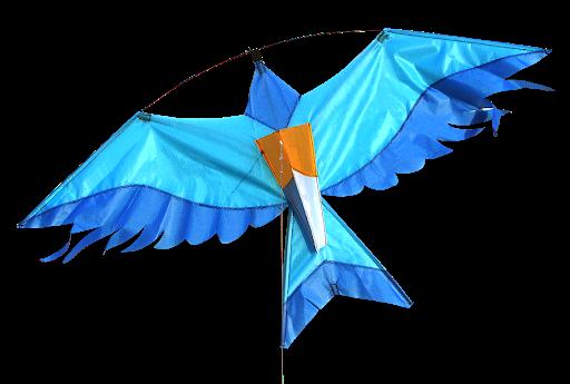 Cerf-volant Blue Bird - Didakites