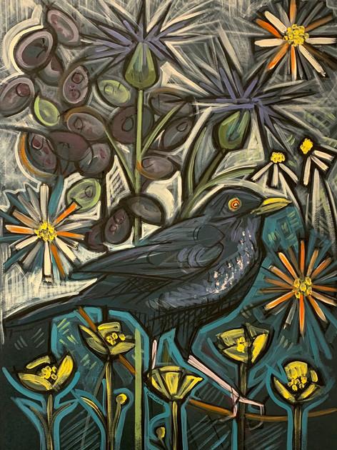 Male Blackbird with Wild Flowers