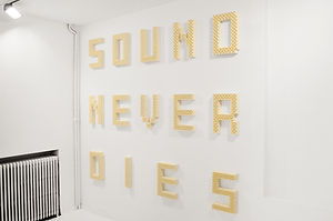 Artwork, sound, art, installation, VOID, acoustic foam, anechoic, words