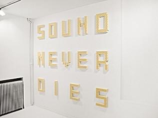 SOUND NEVER DIES #2